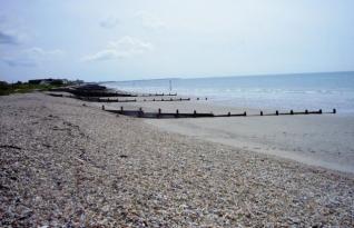 Crânio encontrado em West Sussex sugere que as praias da região foram usadas como cemitérios