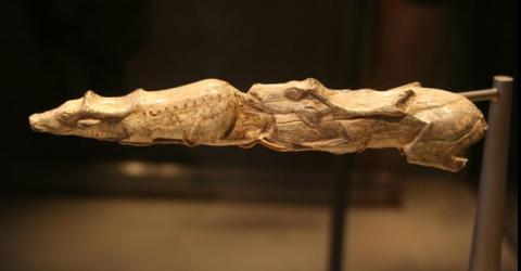 As incríveis esculturas Swimming Reindeer, de mais de 13 mil anos