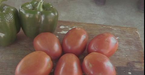 Como extrair sementes de pimentões e tomates